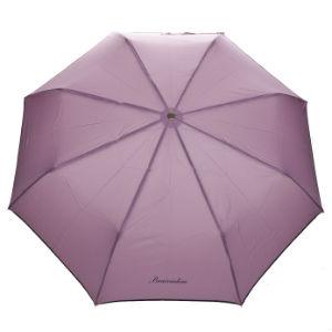 зонт Брачиалини