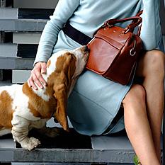 женские сумки Лабра