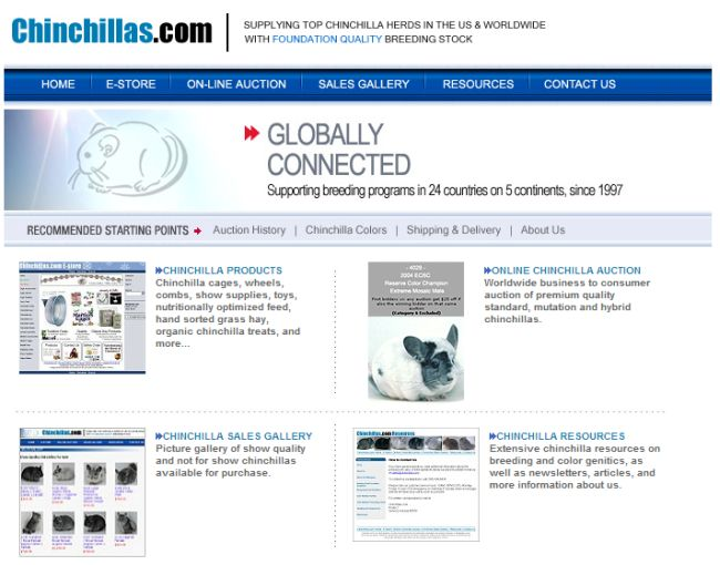 Интернет-магазин Chinchillas.com